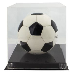 Acrylic Ball Case