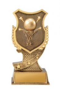 Netball Gold Shield Series
