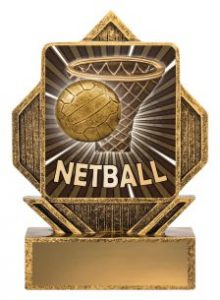 Netball Lynx Arrow Theme