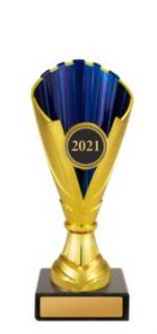 Dance Norwood Cup Gold & Blue